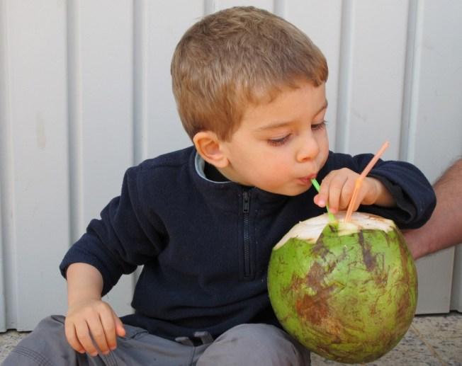 Coconut Guapo