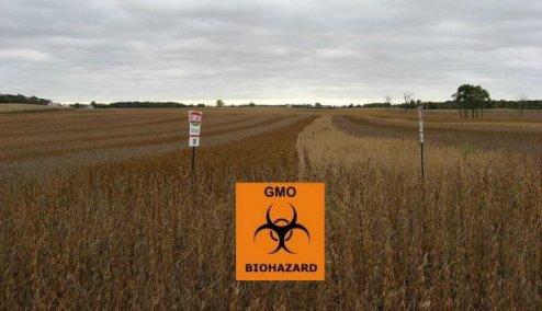 GMO Biohazard