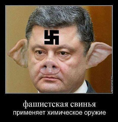 porosh-nazi
